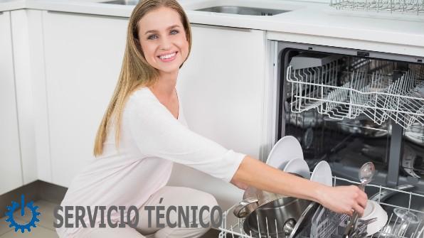tecnico Zanussi Mollet del Vallès